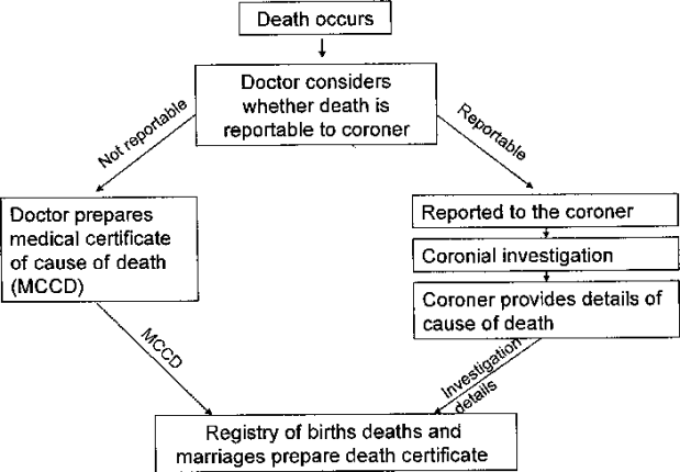 Registration-of-deaths-in-Victoria-Source-Victorian-Parliament-Law-Reform-Committee-28