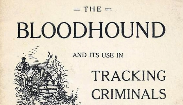 ripper_bloodhounds_brough_book