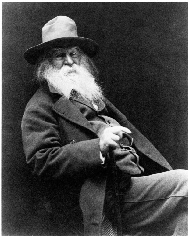 Walt Whitman Poet Literature
